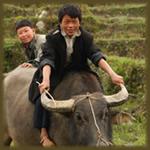 Vietnam 2001