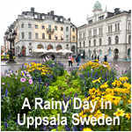 A Rainy Day in Uppsala Sweden
